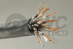 VNTC tray cable image